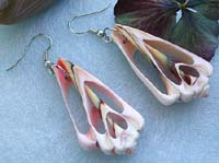 Fashion seashell earring in carved-out tree shape pattern design with fish hook
